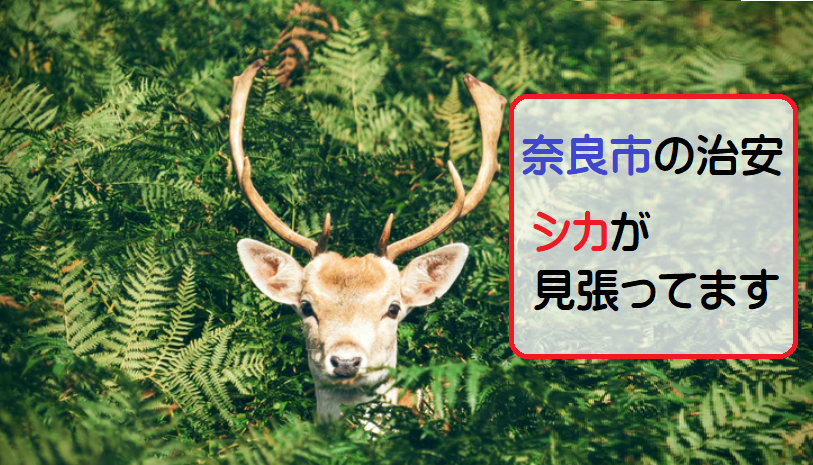 奈良市の治安はいいほう?【奈良市の住みやすさを勝手に評価】