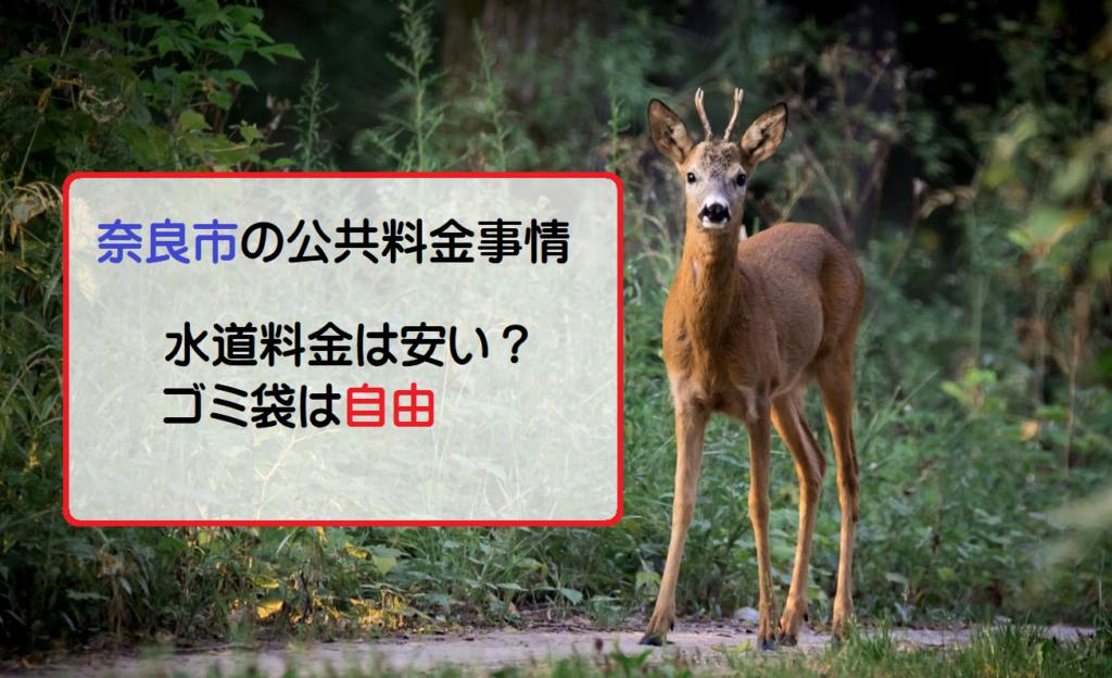 奈良市の水道料金・下水道料金は安い?【奈良市の公共料金】